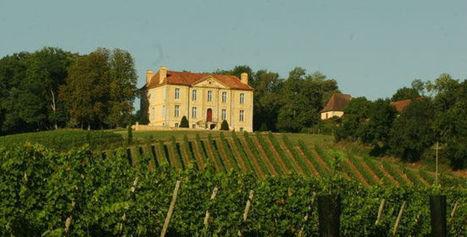 Cet été, c'est Pays Basque ? Faites un tour dans le vignoble de Madiran   Cote-basque way of life   Scoop.it