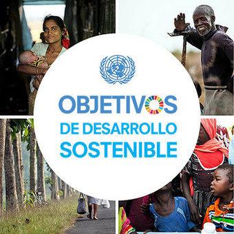 Naciones Unidas anuncia las soluciones climáticas galardonadas en 2015 | Un poco del mundo para Colombia | Scoop.it