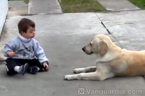 Emocionante video de un niño down jugando con su mascota | Multimedia, Video y Animación | Scoop.it