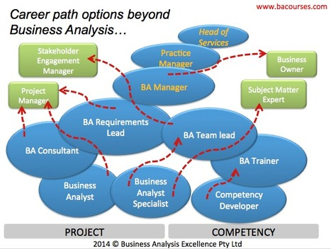 The Sky Is the Limit – The Top 5 Career Paths for a Business Analyst | Business Analysis Careers | Scoop.it
