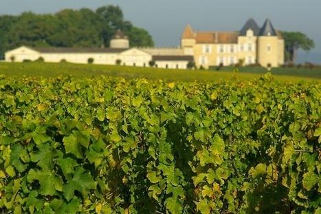 Vins de Bordeaux   Blog   Bordeaux au fil de l'eau - Bordeaux Wines   Oenotourisme en Entre-deux-Mers   Scoop.it