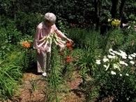 Design elderly accessible gardens | 100 Acre Wood | Scoop.it