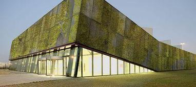 'Living concrete' covers buildings in moss   Architecture and Architectural Jobs   Scoop.it
