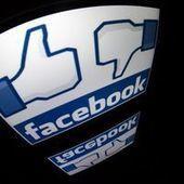 La publicité sur les réseaux sociaux n'est pas vraiment efficace | Stratégie digitale | Scoop.it