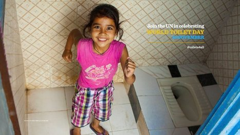 Toilets: A Life-saving Investment Opportunity | INTERNATIONAL YEAR OF WATER COOPERATION 2013 | Scoop.it