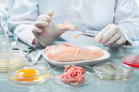 SAPVoice: DNA Testing Has Food Fraud Running Scared | On the Plate | Scoop.it