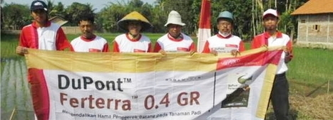 Offering Solutions to Farmers | DuPont ASEAN | Scoop.it