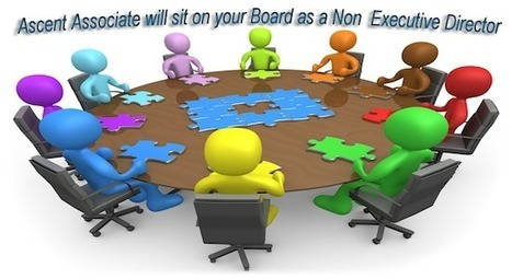 Non-Executive Directors significant help to companies | Doing business in Ireland | Scoop.it