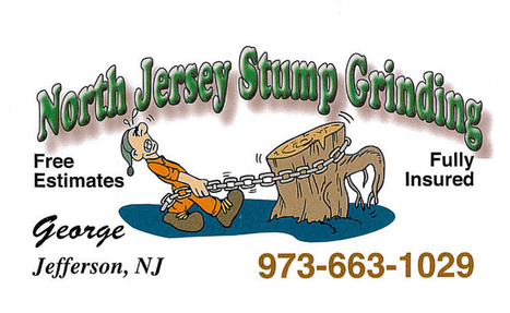 Stump removal company in Hopatcong, NJ - North Jersey Stump Grinding | Stump removal company in Hopatcong, NJ - North Jersey Stump Grinding | Scoop.it