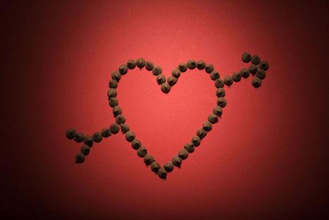 History of Valentine's Day | Homework Helpers | Scoop.it