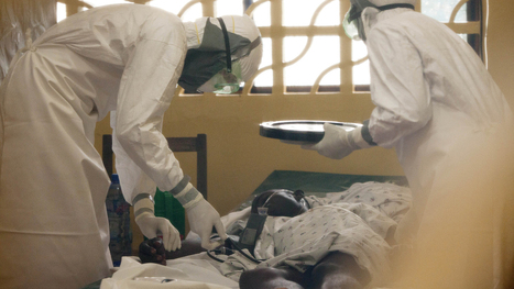 How the Ebola virus works | Sustain Our Earth | Scoop.it