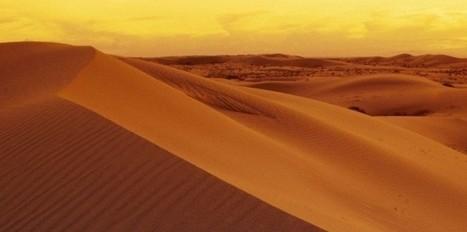 Du coton pour capter l'eau dans le désert - Le Nouvel Observateur | Les déserts dans le monde | Scoop.it