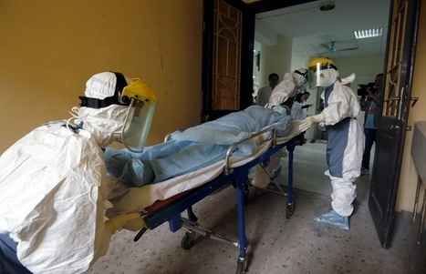 Ebola virus death toll rises to 6,841 - WHO | Virology News | Scoop.it