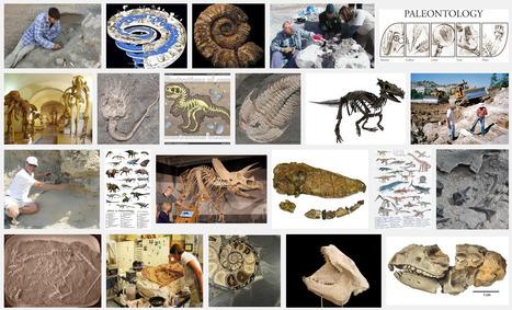 Amazing Science: Paleontology Postings | Amazing Science | Scoop.it