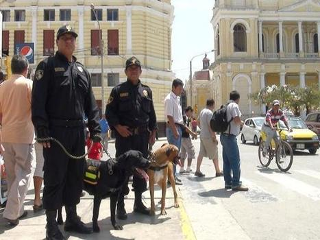 #Perú: Arequipa: canes integrarán patrullaje de seguridad ciudadana en distrito - RPP Noticias   Qué hay en Seguridad Pública?   Scoop.it