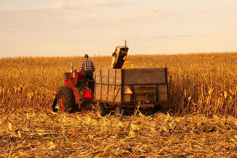 Iowa Scientists Say Climate Change Threatens State Agriculture ... | ALS Animals | Scoop.it