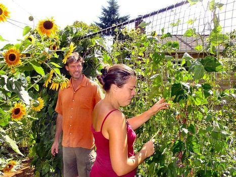 Woodstock couple converts home & lot into permaculture showcase - Portland Tribune | Permaculture Digest | Scoop.it