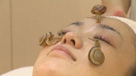 Snail facials ... the next big thing? | Anti-Aging Facial Rejuvenation | Scoop.it