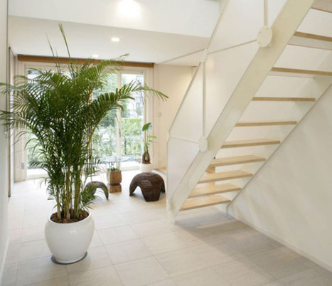 Los 8 materiales más naturales para la arquitectura sustentable ... | vivienda sustentable | Scoop.it