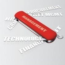 Transformation du secteur public : priorité à la réduction des coûts en 2013   IT governance   Scoop.it