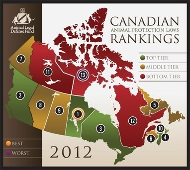 2012 Canadian Animal Protection Laws Rankings « STOP ANIMAL ... | Animals R Us | Scoop.it