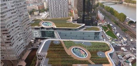 Une charte pour végétaliser 100 hectares de toits et murs à Paris | ville et jardin | Scoop.it