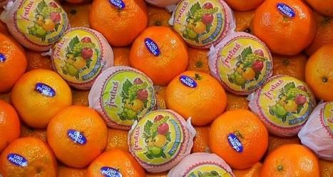 """Conoce más sobre los GMO y su """"satanización"""" como señalan expertos - VeoVerde   alimentos   Scoop.it"""