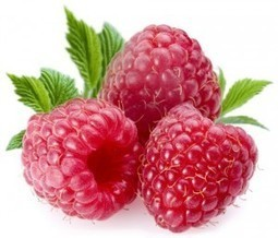 Raspberry Ketones Max For Weight Loss   Losing Fat: How To Do It   Scoop.it