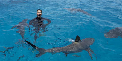 Eli Roth Wants to Change the Way You See Sharks | All about water, the oceans, environmental issues | Scoop.it