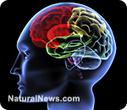 CoQ10 helps heal neurodegenerative disease: Study | Pineal Cysts | Scoop.it