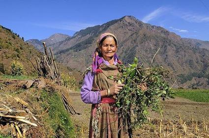 Climate finance could help smallholders adopt sustainable agriculture | Agriculture and Climate Change | Scoop.it