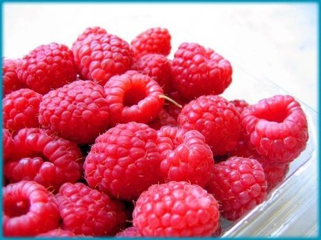 Red Raspberry | Nutrition & Healthy Foods | Scoop.it