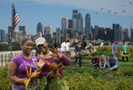 High School Launches Fundraising Campaign For Green Roof | Vertical Farm - Food Factory | Scoop.it