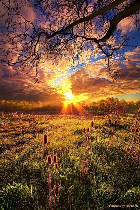 &quot;All The World Was Right&quot;<br/>Wisconsin Horizons By Phil Koch.<br/>http://phil-koch.artistwebsites.com   Beautiful Photography   Scoop.it