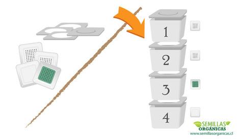 Como hacer una compostera con lombrices californianas | AGRICULTURA ORGANICA | Scoop.it