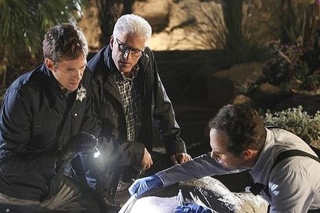 'CSI' Season 14 Spoilers: 'Take the Money and Run' Recap, 'ER's' Sherry ... - Latinos Post | Stylish CSI Catherine Willows Marg Helgenberger Costume | Scoop.it