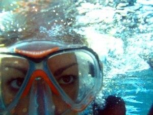 Before you take up Diving…Some things you should know   World ...   ScubaObsessed   Scoop.it