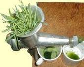 Wheatgrass Juice by Jeffrey Dach MD | LOCAL HEALTH TRADITIONS | Scoop.it