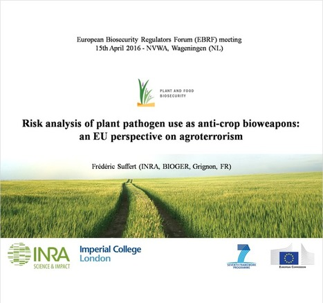 """Focus on """"Risk analysis of plant pathogen use as anti-crop weapons"""" (3rd EBRF meeting, Biosecurity Office/NVWA, NL, 15th April 2016) 