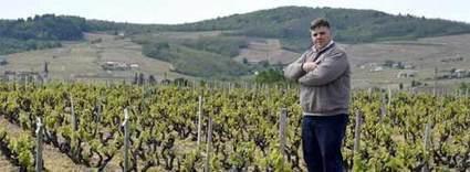 Thibault Liger Belair, viticulteur bio : procès reporté au mois de novembre | Créatifs culturels | Scoop.it