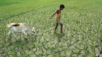 Climate change to 'severely impact' growth in South Asia - Deutsche Welle | Sustain Our Earth | Scoop.it