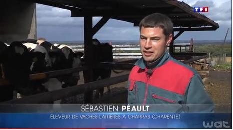 Un jeune agriculteur vend ses 88 vaches sur... le bon coin | Elevage | Scoop.it