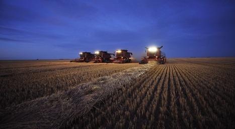 Les ingrédients d'une crise alimentaire mondiale sont réunis | Questions de développement ... | Scoop.it