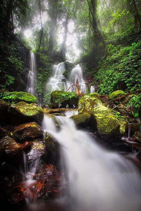 Mystic Falls | Dorrigo | Scoop.it