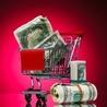 ecommerce technology spending, Internet retailer survey, Nov 2012