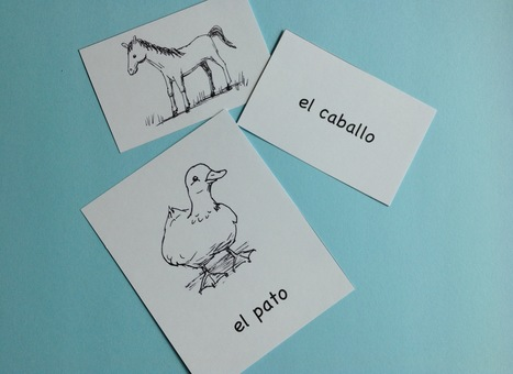 Spanish Animals – Picture Cards and 25 Activities | Spanish curriculum for preschoolers | Scoop.it