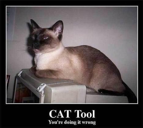 Las herramientas TAO son un medio, no un fin - Algo más que traducir | CAT Tools | Scoop.it