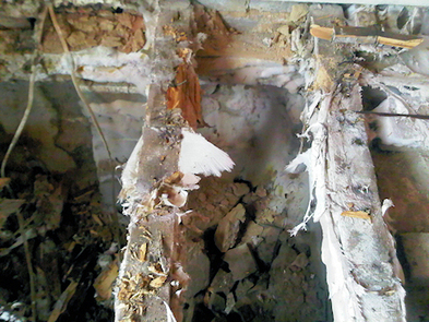 Dry Rot | How to identify Dry Rot | Symptoms of Dry Rot | Timberwise | Property Care | Scoop.it