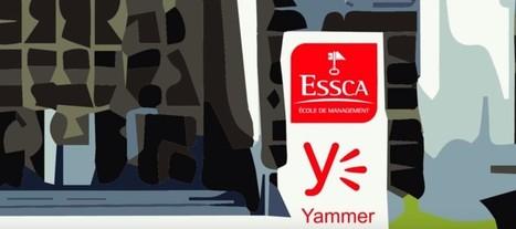 Un réseau social interne en école de commerce : l'exemple de l'ESSCA | TICE | Scoop.it