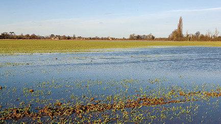JIC mention: UK soil crisis hitting crop yields, warns expert | BIOSCIENCE NEWS | Scoop.it